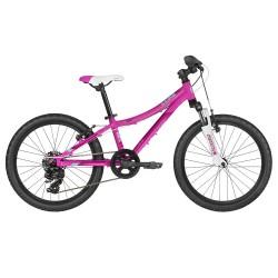Kellys Lumi 50 Pink